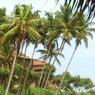 A sziget hangulat Sri Lankán különösen érezhető